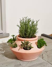 herbs planter terracotta herb planter m u0026s