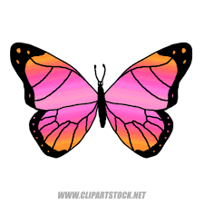 butterfly clip art clipart panda free clipart images