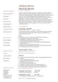 Resume Sample For Data Entry Operator by 20 Sample Resume Of Data Entry Clerk A Comparison Of Word