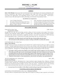 Sample Resumes For Sales Executives Sample Cv Sales And Marketing Manager
