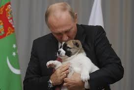 Vladimir Putin Meme - vladimir putin becomes a meme after hugging and kissing adorable