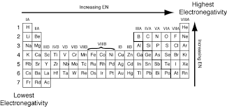 Bromine On The Periodic Table Which Of The Following Elements Has The Lowest Electronegativity