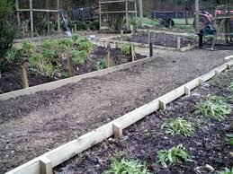 Timber Garden Edging Ideas Wooden Garden Edging Gardening Design