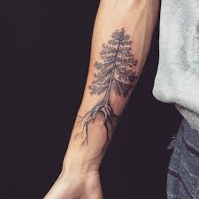 pine tree forearm length with roots tattooimages biz