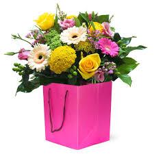 flowers international sugar pop rocamaer flowers
