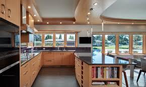 modern gourmet kitchen energy exquisite lilu interiors
