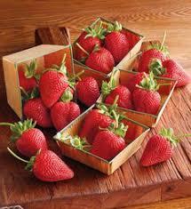 organic fruit of the month club organic fruit of the month club organic fruit delivery harry