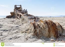 rusty crane in the salton sea stock photo image 53326748