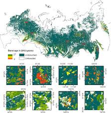 North America Forest Map by Distribution Of Young Forests And Estimated Stand Age Across