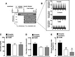 pulsatile portal vein insulin delivery enhances hepatic insulin