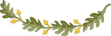 clipart of a design element of oak leaves
