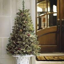 Christmas Decorations Outdoor Trees by 53 Best Christmas Trees Lakeland Fl Images On Pinterest