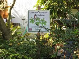 the garden in january chickadee gardens