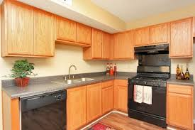 1 bedroom apartments for rent in columbia sc columbia sc rental homes houses columbia rent