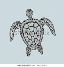 zentangle stylized turtle hand drawn aquatic stock vector