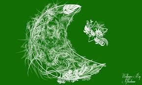 Pakistans Flag Pakistan Flag Abstract Designe By Tecartist On Deviantart