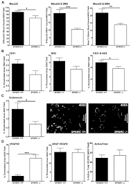 lack of host sparc enhances vascular function and tumor spread in