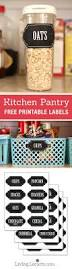 Organizing Kitchen Pantry Ideas 445 Best Conquer Your Kitchen Clutter Images On Pinterest