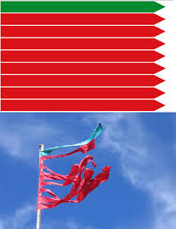 Flag Folding Meaning Flag Of Zamora Spain This Is One Of The Weirdest Flags That I