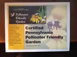 native plants of pennsylvania native plants archives the pollywog pond