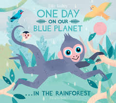 flying eye books one day on our blue planet in the rainforest