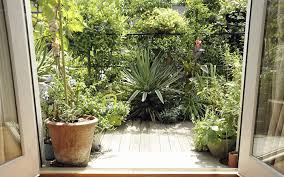 Urban Gardening Ideas - urban gardening ideas how to grow plants without a garden