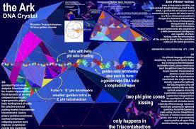golden ratio dna spiral unified fractal field