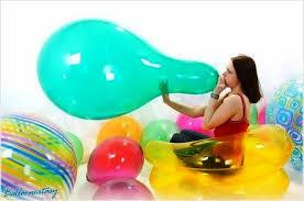 qualatex balloons qualatex 24 balloons wiki fandom powered by wikia