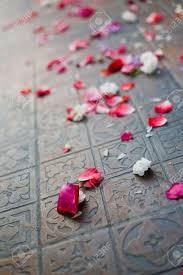 falling petals stock photos u0026 pictures royalty free falling