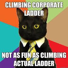 Ladder Meme - climbing corporate ladder cat meme cat planet cat planet