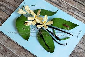 vanilla orchid quilled vanilla orchid vanilla planifolia quilling by manuk