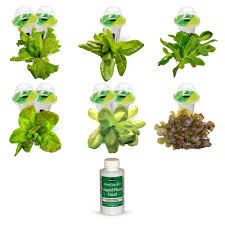 miracle gro aerogarden classic 6 with gourmet herb seed pod kit
