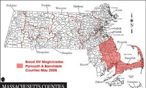 map of massachusetts counties brood xiv periodical cicadas in 2008