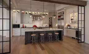 door design idea for luxury modern kitchen