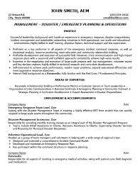 professional resumes exles resume of team leader great team lead resume for your professional