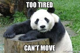 Too Tired Meme - too tired can t move lazy panda make a meme