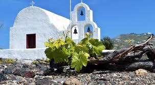 Greek Wine Cellars - wine places exclusive wine