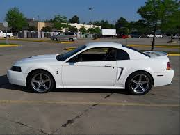 1999 ford mustang pictures 1999 ford mustang svt cobra image 14