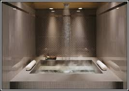 cool walk in showers home living room ideas