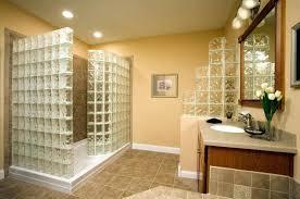 Basement Bathrooms Ideas Remodel Basement Bathroom Ideas Typical Basement Remodel Ideas
