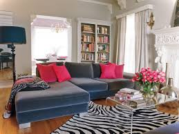 Grey Sofa Living Room Ideas 2014 Luxury Living Room Design With Navy Blue Coach And Zebra Rug