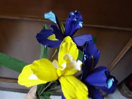 Iris by How To Make Paper Flowers Iris Flower 8 Youtube