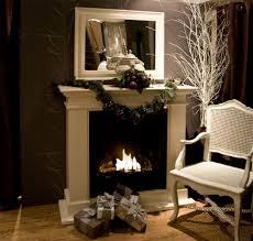 ii bio fireplace