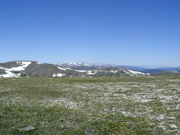 tundra no picture bio pres ppt google slides