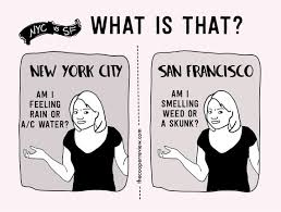 San Francisco Meme - the difference between living in new york and san francisco pt ii