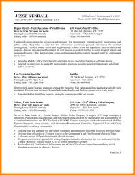 Best Buy Resume by 8 Usa Jobs Resume Sample Hr Cover Letter