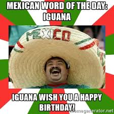 Mexican Birthday Meme - sombrero mexican mexican word of the day iguana iguana wish you a