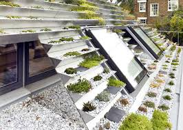Roof Garden Plants A Place For Plants Terraced London Roof Is A Smart Solution