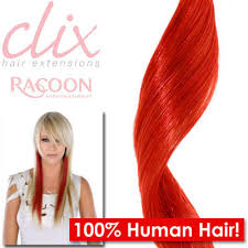 racoon hair extensions racoon human hair extensions indian remy hair