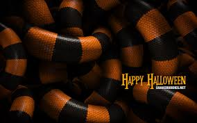 halloween desktop wallpaper widescreen the snake pit u201d free halloween desktop wallpaper snake buddies